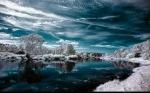 nature-image